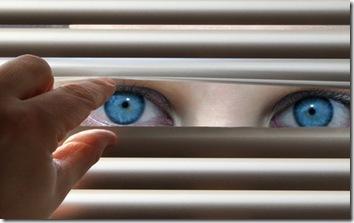 Privatsphäre-Paradoxon in Deutschland